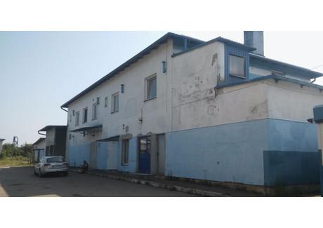 Magazyn, hala do wynajęcia - Uzdowo, Działdowo (Gm.), Działdowski (Pow.), 800 m², 3900 PLN, NET-3
