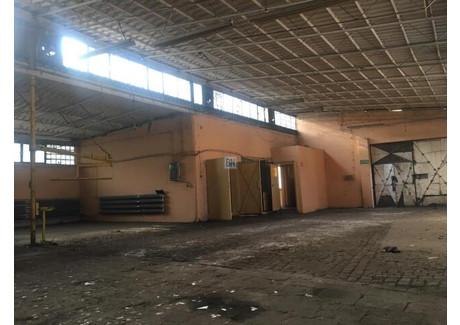 Obiekt na sprzedaż - Gliwice, 472 m², 700 000 PLN, NET-522