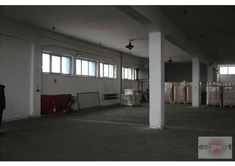 Lokal usługowy do wynajęcia - Teofilów, Bałuty, Łódź, Łódź M., 2200 m², 39 600 PLN, NET-EXP-LW-9068
