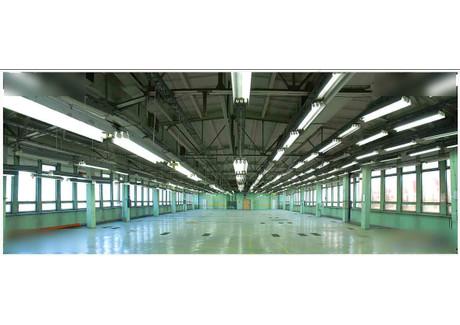 Magazyn, hala do wynajęcia - Warszawska 44 Pabianice, Łódź, 400 m², 2800 PLN, NET-glw1666287