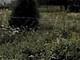 Działka na sprzedaż - Tyrowo, Ostróda (gm.), Ostródzki (pow.), 1121 m², 18 525 PLN, NET-884