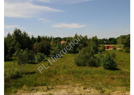 Działka na sprzedaż - Kanie, Pruszkowski, 13 536 m², 800 000 PLN, NET-G-22430-0/E73