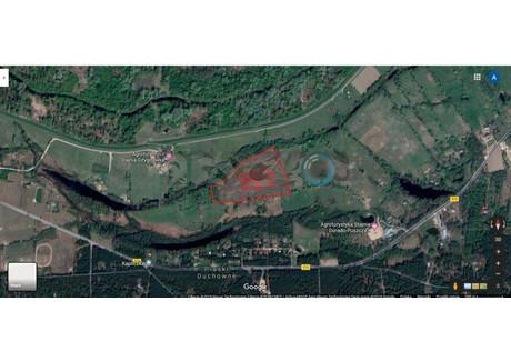 Działka na sprzedaż - Nowy Secymin, Leoncin (gm.), Nowodworski (pow.), 45 500 m², 320 000 PLN, NET-1208