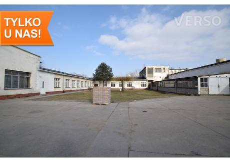 Działka na sprzedaż - Strzegom, Świdnicki, 31 386 m², 7 990 000 PLN, NET-1045/2082/OGS
