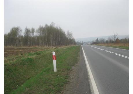 Działka na sprzedaż - Bystrzyca Kłodzka, Kłodzki, 14 059 m², 281 180 PLN, NET-188