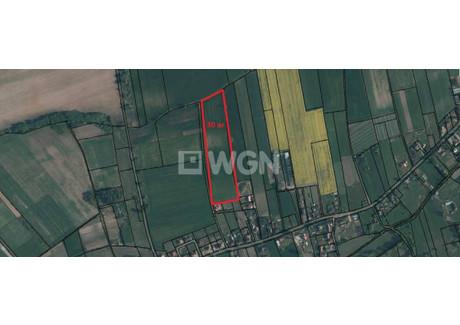 Działka na sprzedaż - Niemstów, Lubin, Lubiński, 3000 m², 105 000 PLN, NET-196