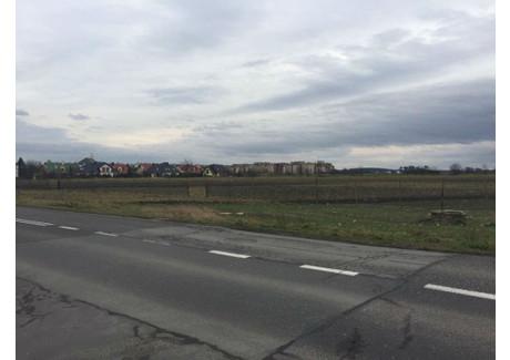 Działka na sprzedaż - Strzelce Opolskie, Strzelecki, 4070 m², 199 000 PLN, NET-ZUR-GS-585