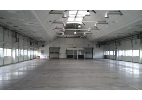 Magazyn do wynajęcia - Gliwice, Gliwice M., 2470 m², 41 400 PLN, NET-ZUR-HW-3268