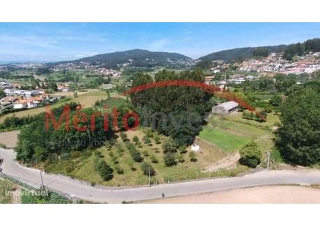 Działka na sprzedaż - Escudeiros E Penso (Santo Estêvão E São Vicente), Portugalia, 8177 m², 165 000 Euro (709 500 PLN), NET-51270587