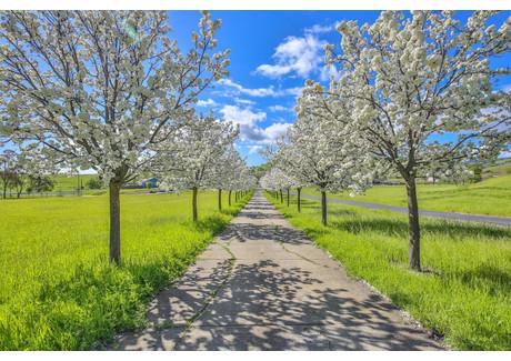 Dom na sprzedaż - 4125 Pippo Vacaville, Usa, 304 m², 1 329 000 USD (5 063 490 PLN), NET-58735564